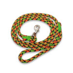BULLYMAKE Heavy Duty Nylon Leash - Orange, Green, & Black