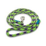 BULLYMAKE Heavy Duty Nylon Leash - Green & Purple